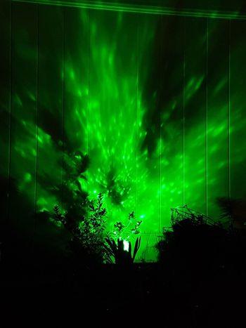 The Week On EyeEm Green Color Nightlife Silhouette Night Illuminated