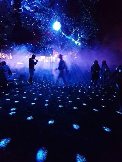 Silhouette people watching firework display at night