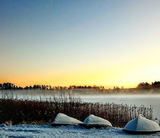 Sigtuna Morning Sun Sunrise Life Lifequality Bythewater Stockholm Picoftheday Photooftheday Photographer Pic Nature