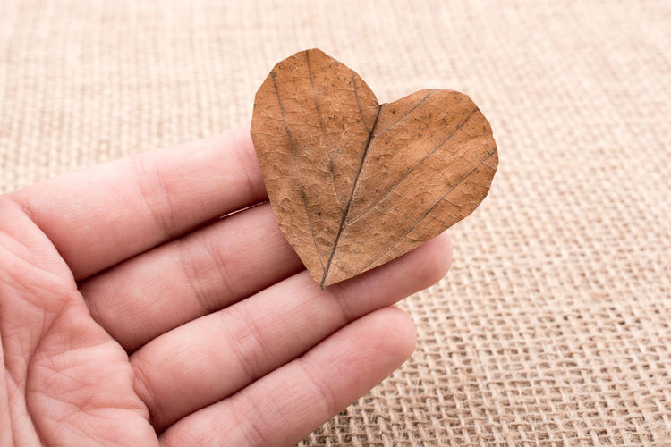 Close-Up Of Human Hand Holding Dry Heart Shape Leaf On Burlap