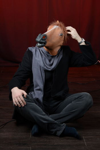 The man in the horse mask