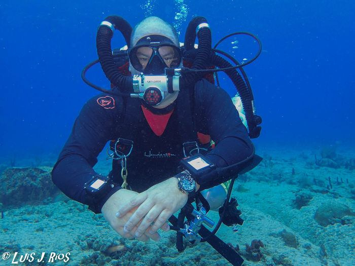 Aguadilla, Puerto Rico Diving Equipment Hollis Gear Puerto Rico Rebreather Diving Sea Life UnderSea Underwater