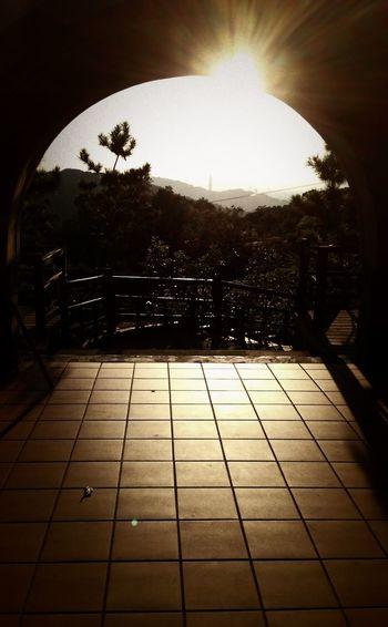 Sunshine Sunset Monochrome 看得見101喔!