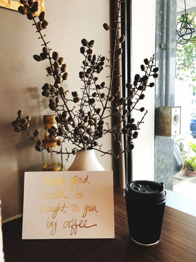 Indoors  Text Paper Potted Plant Table No People Home Interior Vase Plant Day Flower Close-up