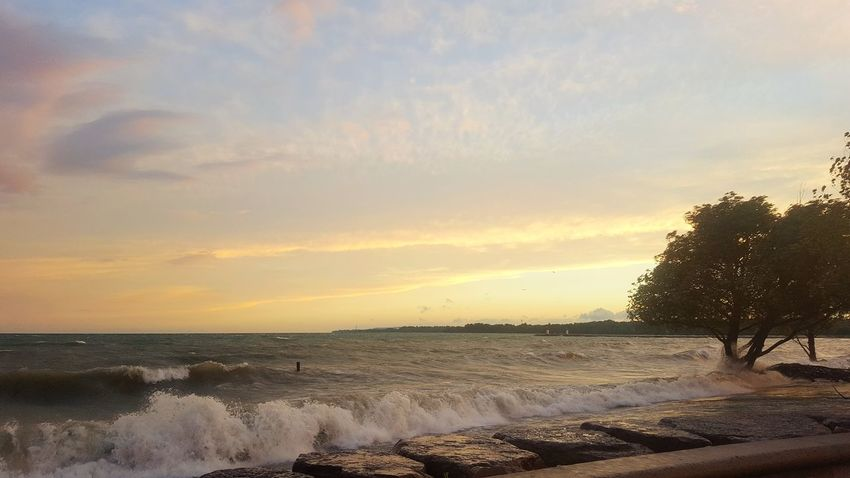 High waters and no beach. Post storm waves at Frenchman's Bay. Summer Frenchmans Bay Pickering Post Storm Sunset Sunset Lake Ontario Windy Beauty In Nature Nature Water Cloud - Sky Sky Beach Lake Post Storm Waves Tree High Water