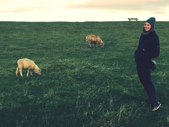 With Sheeps
