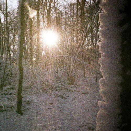 wintery forest on expired film von McMac70 auf Flickr. Folge diesem Link, um dieses Foto anzuzeigen und zu kommentieren: https://flic.kr/p/tXtXyp Film Film135 Natur Natur Expired Expiredfilm Schnee Snow Winter Wald Forest Baum Tree