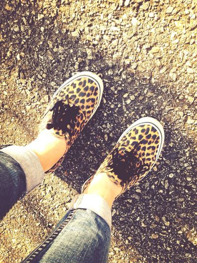 Shoes Leopard Spring Check This Out