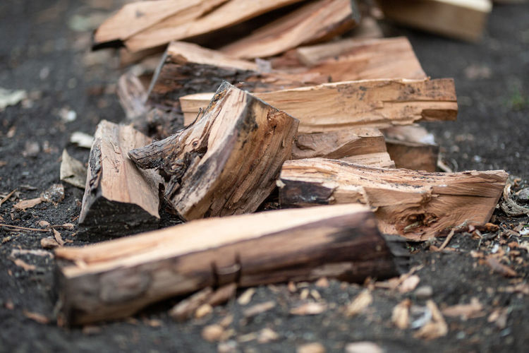 Wood - Material Selective Focus Wood Log Timber No People Firewood Close-up Tree Forest Day Field Land Nature Deforestation Stack Lumber Industry Outdoors Brown Damaged Chopped Messy Surface Level Bonfire