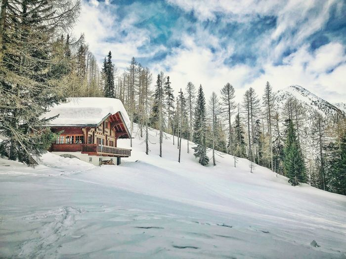 Petit Chalet Alps Switzerland Snow Cold Temperature Winter Nature Weather Tree Scenics Built Structure Frozen Beauty In Nature House Tranquil Scene Architecture Outdoors Tranquility Landscape White Color No People Day Building Exterior