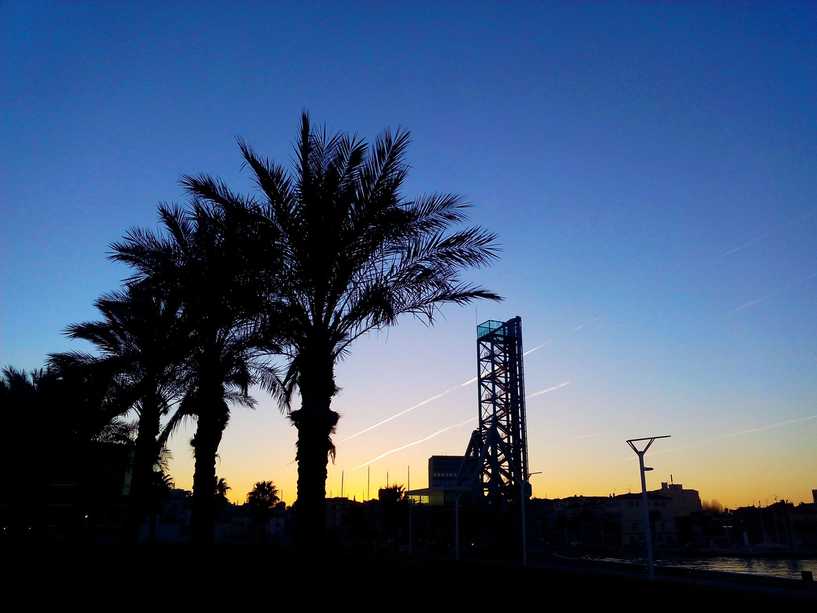 silhouette, sunset, clear sky, blue, copy space, connection, tree, built structure, low angle view, dusk, orange color, nature, architecture, sky, electricity pylon, fuel and power generation, tranquility, outdoors, no people, scenics