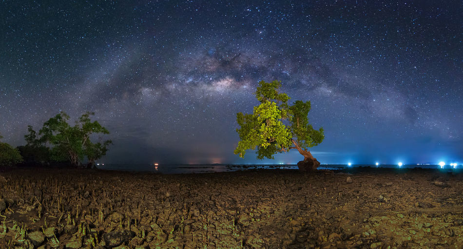 Panorama Milky Way Night Star - Space Astronomy Space Galaxy Sky Scenics - Nature Beauty In Nature Tree Milky Way Plant Nature Land Tranquil Scene Tranquility Landscape Star Environment Star Field Constellation No People Outdoors Dark Astrology Space And Astronomy