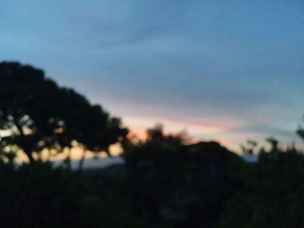 Silhouette Nature Landscape Sunset Sky Scenics Outdoors