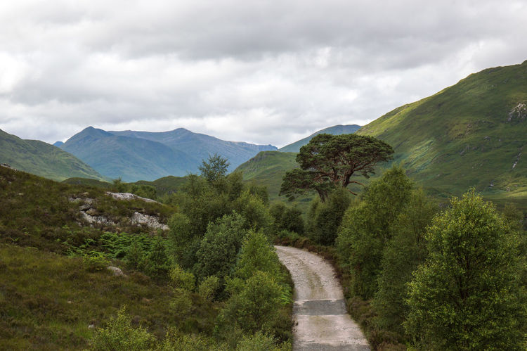 follow me on instagram: Tdcr_photography https://www.instagram.com/tdcr_photography/ Bat Beauty In Nature Cloud - Sky Day Exploring Growth Landscape Mountain Mountain Range Mountains Nature No People Outdoors Relaxing Scenics Scotland Sky Sky And Clouds Tree Tree Wood