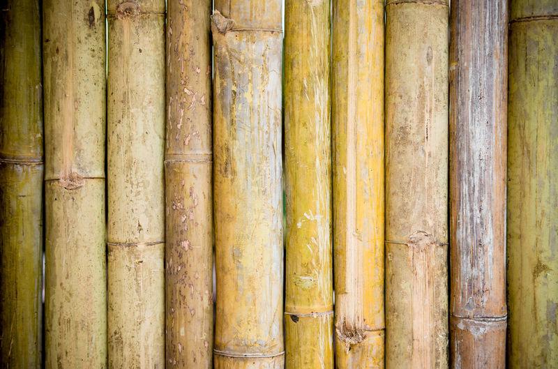 Full frame shot of bamboo on wood
