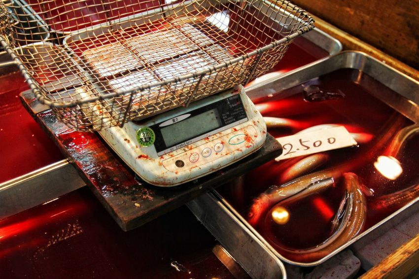 Blood Blood Bath Brutal Close-up Day DEAD FISH Environmental Issues First Eyeem Photo Fish FishMarket High Angle View Illuminated Indoors  Japanese Culture Japanese Food Killed Market No People Red Reflection Steel Basket Swimming In Blood Technology Tokyo Fishmarket Weight