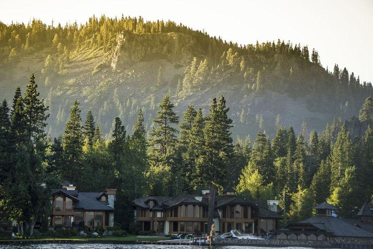 Trees against mountain range against sky