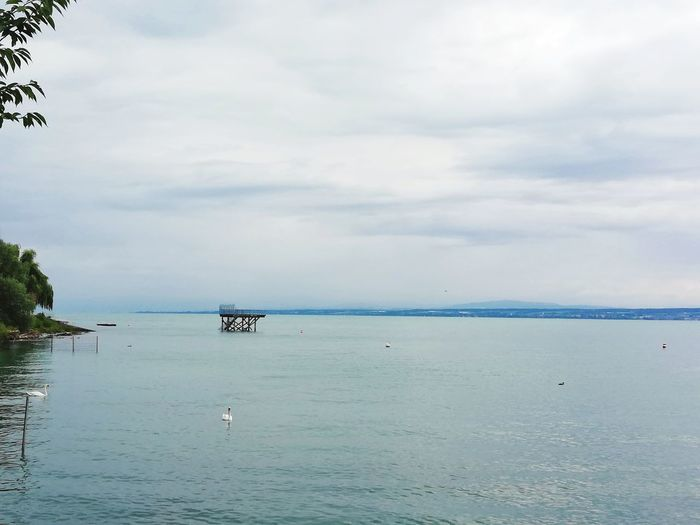 Lake Constance view under grey sky during summer Lake View Lake Landscape Outdoors Grey Sky Cloud - Sky Summertime Constance_lake Travel Destinations Tourist Attraction  Tourism Destination Fishing Horizon Over Water Sea And Sky Europe Trip European Alps Water Sea Beach Sky Horizon Over Water Cloud - Sky Seascape Calm Idyllic Tranquil Scene Tranquility Lakeside Coast Ocean