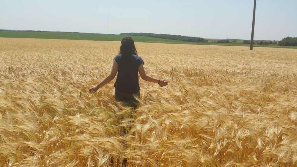 Alone Backside Portrait Girl In Field Landscape Wheat Field EyeEm Nature Lover Visual Trends SS16 - The Rise of Nature Samsung Galaxy Note 4 43 Golden Moments 43 Golden Moments Greatyarmouth