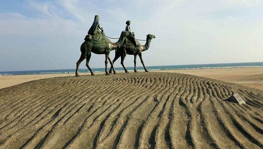 explorando Monumento Estatua Onjuko Japan Sea Beach Sand Sky Horizon Over Water Travel Camel