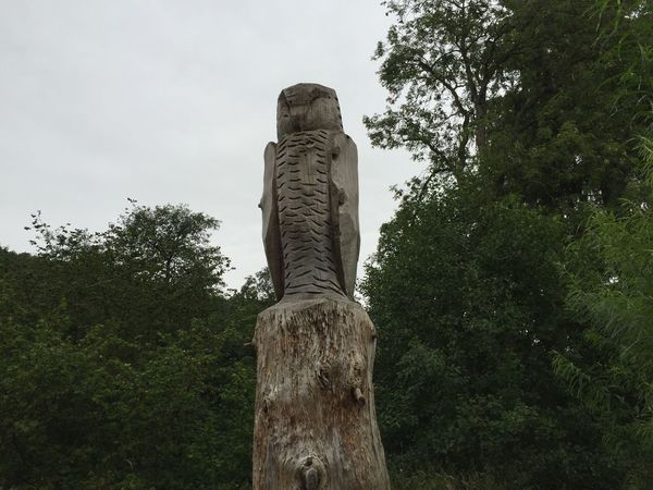 Tree Trunk Carving - Craft Product Forest Dalby Forest