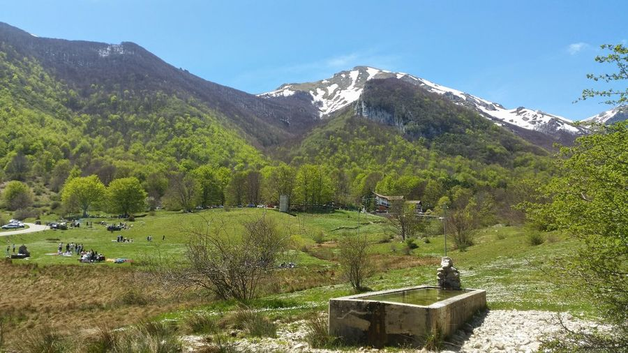 the resort of Rigopiano with his infamous hotel Abruzzo - Italy Badweather Beauty In Nature Day Gransasso Gransassonationalpark Green Color Hotel Landscape Landslide Lush - Description Mountain Nature No People Outdoors Plant Resort Rigopiano Scenics Sky Tragedy Tree
