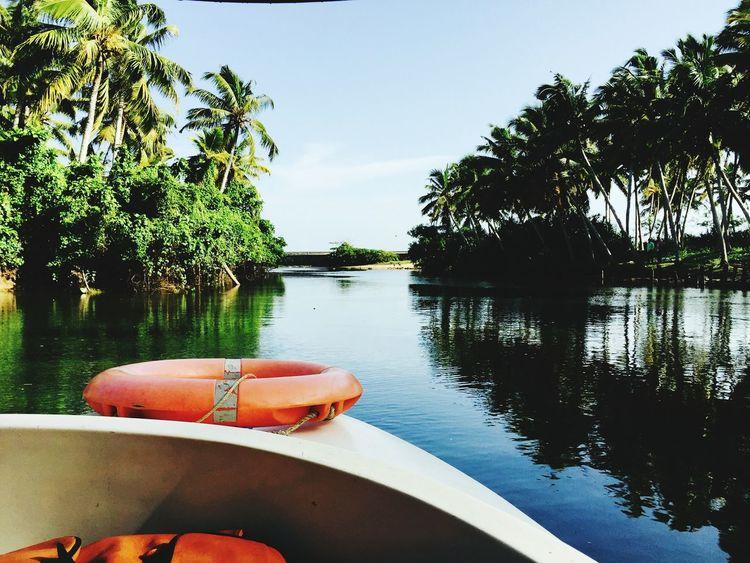 backwaters incredible india peace ✌ Boat Ride Mangrove Forest Beautiful View Beautiful Evening