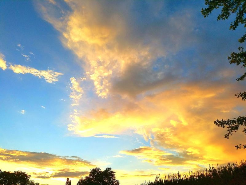 Cloud - Sky Sunset Nature Sky Outdoors Landscape No People Scenics Blue Tranquility Day Beauty In Nature Tree Beauty Beauty In Nature Sunset Clouds And Sky Summer Skys