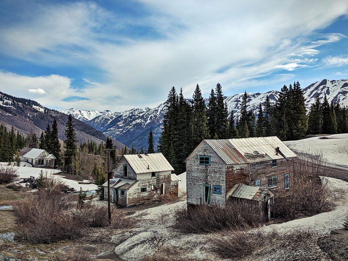 Trees and houses on snow covered field by buildings against sky