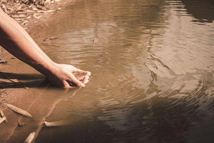 High angle view of hand in lake