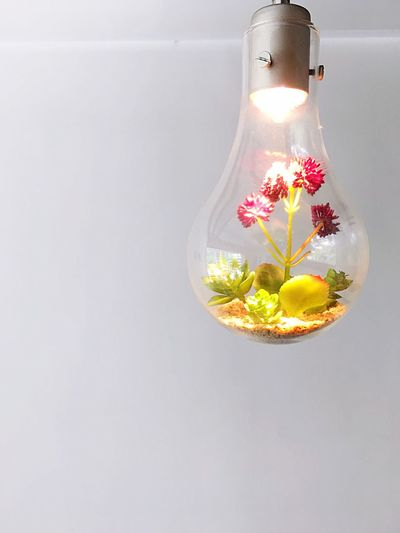No People Indoors  Close-up Light Bulb Studio Shot Electricity  Illuminated Flower White Background Fragility Perfume Day