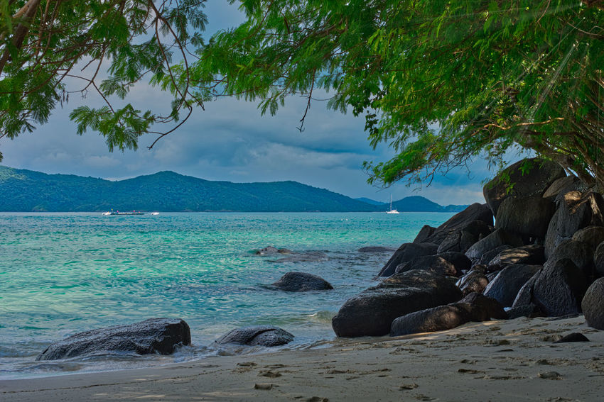 Scenic view of beach in noon Beach Beach Day Beauty In Nature Coral Island,Thailand Day Nature No People Noon Outdoors Scenics Sea Sky Tranquility Tree Water