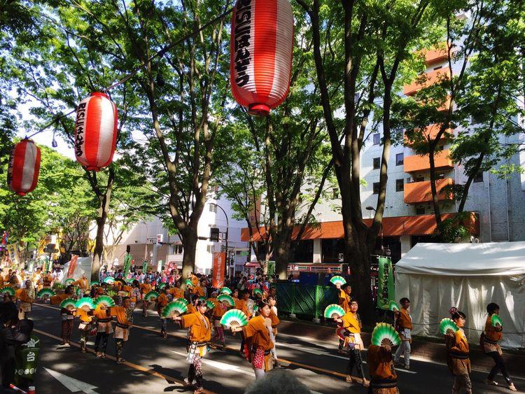 Sendai Sendai-shi 青葉まつり 定禅寺通り 仙台市 祭り 新緑 深緑