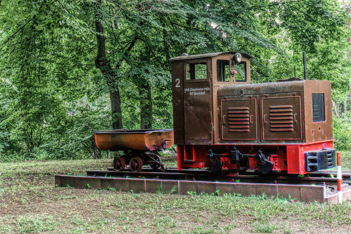 Day Green Color Hdrphotography Locomotive Nature No People Old-fashioned Outdoors Peißnitz-E-Lok Peißnitzinsel Retro Styled Steam Train Strteetp Tree