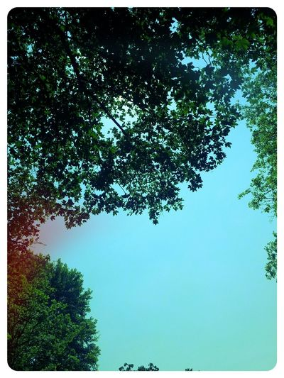 Take A Break Nature Relaxing