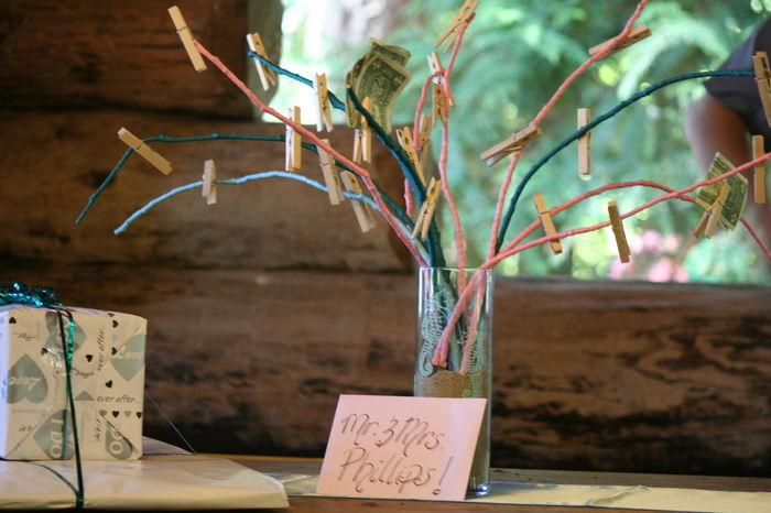 Close-up Day Decoration Empty Focus On Foreground Millersylvania State Park Money Tree No People Outdoors Selective Focus Still Life