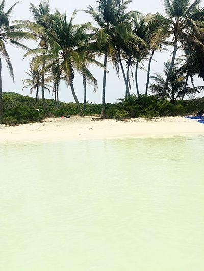 Mexico Starting A Trip Life Is A Beach Playita Visitmexico Beach Photography Beutiful  Island Bellezanatural