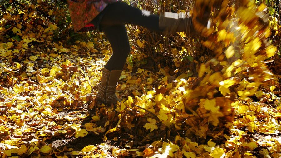Autumn fun Nature Autumn Sunlight Scenics Beauty In Nature Low Section Close-up Leisure Activity Human Body Part Eyem Gallery EyeEm Gallery Autumn Leaves Kicking Leaves Girl Movement Catch The Moment Boots Casual Clothing