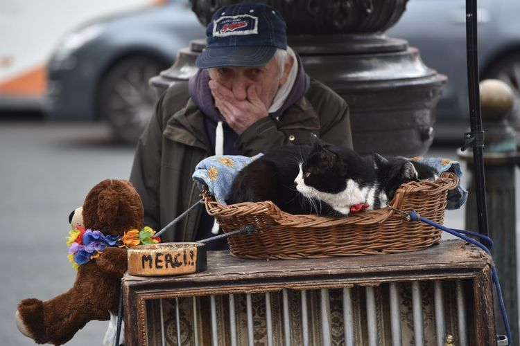 Feel The Journey Man Elderly Old Man Beggar Piano Cat ALMS Street Paris France