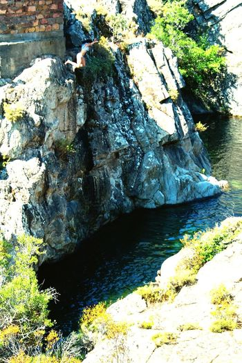 Cliff Diving Fango Cliff Cliff Diving Brave Jumping Nature Water Tree Rock Stream Rock Formation Stone Be Brave