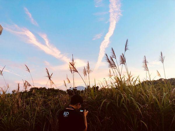 taking pictures Sunset Rural Scene Sky Close-up Plant Cloud - Sky Landscape