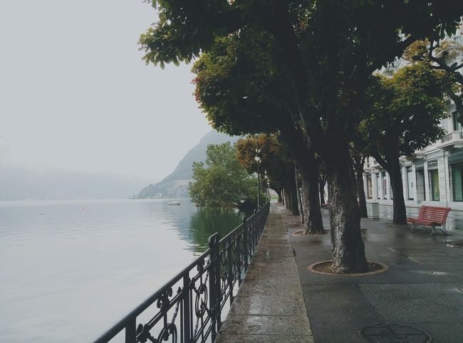 Lugano, Switzerland Luganolake Lugano Comolake Switzerlad Mountain Lake Fog Morning