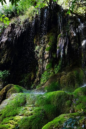Nature Beauty In Nature No People Day Waterfall Green Color