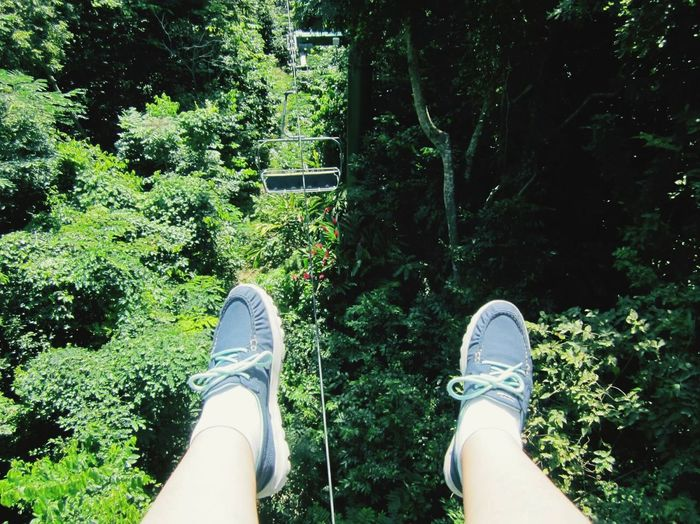 Holiday POV Jamaica Mystic Mountain Rain Forest Above The Trees Sky Tram