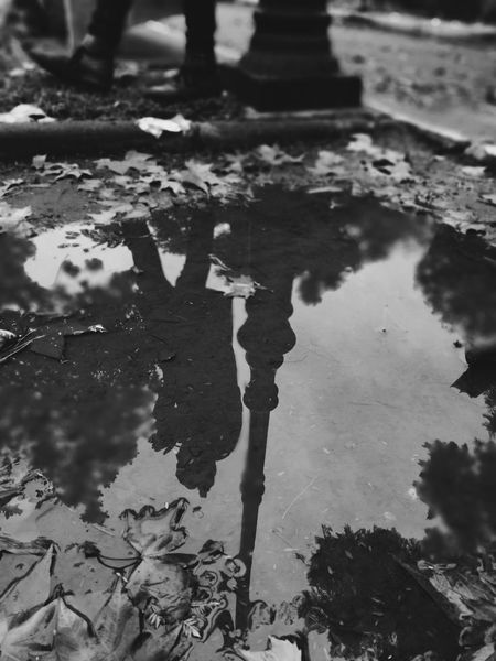 Reflection Morocco Visualsoflife Blackandwhite Photography An Eye For Travel Blackandwhite Bnw EyEmNewHere EyeEmNewHere Reflection Water Puddle Standing Water Outdoors Day Sewage Tree