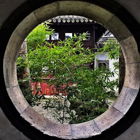 Abandoned Growth No People Plant Built Structure Architecture Day Arch Outdoors Nature Well  Circular Museum Su zhou