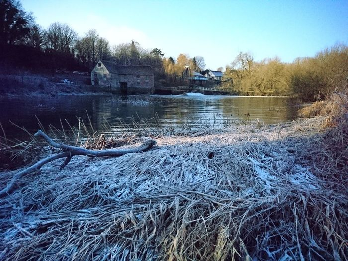 Water Tree Outdoors Beauty In Nature Just Chillin' This Is Me..... Photography Is My Escape From Reality! Thisismyworld Fast Water Flows Water Mill Weir Frosty Morning Sturminster Newton Dorset