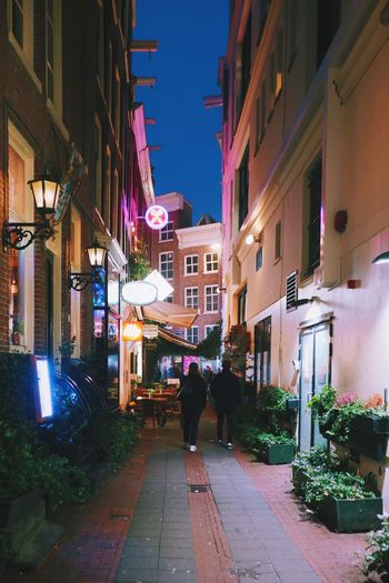 Colorful Amsterdam. Architecture Building Exterior Built Structure Night Illuminated Walking Outdoors Street Light City Real People Leisure Activity Sky People Streetphotography City Walking Around Colorful City Lights City Street Street Narrow Street City Center