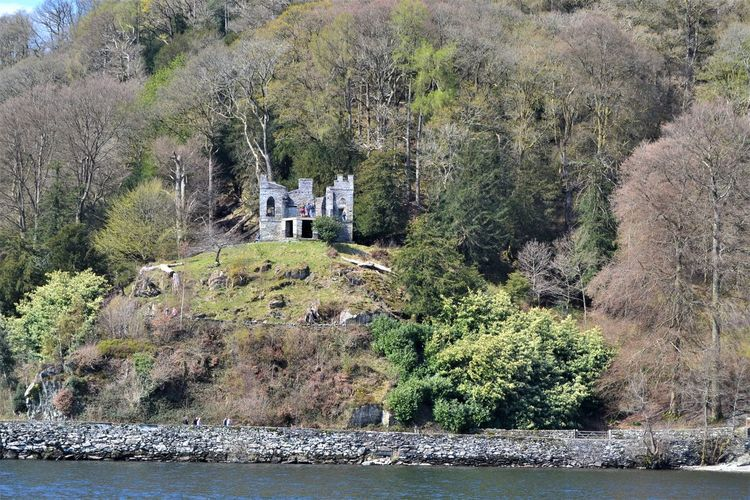 Stone built three windowed folly on one of the islands of Lake Windermere, Cumbria, UK Tree Plant Water Day Mountain Architecture Nature Built Structure No People Land Forest Growth Building Exterior Beauty In Nature River Scenics - Nature Outdoors Building Windermere Cumbria Folly