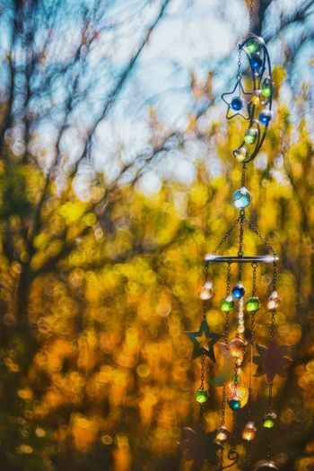 Windchimes. Summer Autumn Fall Spring Nature Lifestyle Free Spirit Bokeh Boho Summer In The City Tree Hanging Close-up Sky